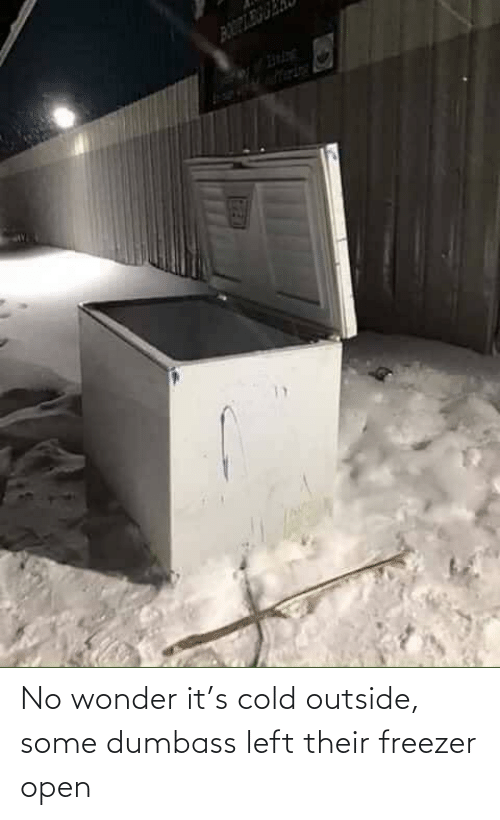 no: No wonder it's cold outside, some dumbass left their freezer open