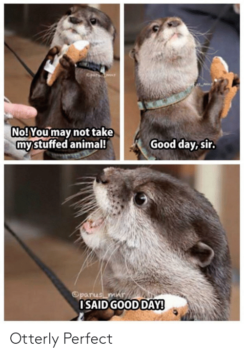 Day Sir: No! You may not take  mystuffed animal!  Good day, sir.  Oparus m  OSAID GOOD DAY! Otterly Perfect