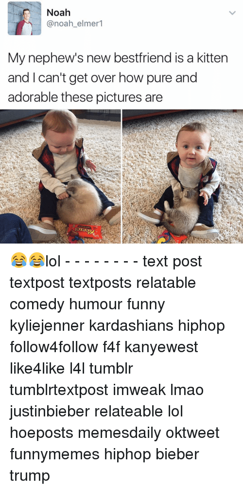 Lol Texts: Noah  @noah elmer  My nephew's new bestfriend is a kitten  and I can't get over how pure and  adorable these pictures are 😂😂lol - - - - - - - - text post textpost textposts relatable comedy humour funny kyliejenner kardashians hiphop follow4follow f4f kanyewest like4like l4l tumblr tumblrtextpost imweak lmao justinbieber relateable lol hoeposts memesdaily oktweet funnymemes hiphop bieber trump