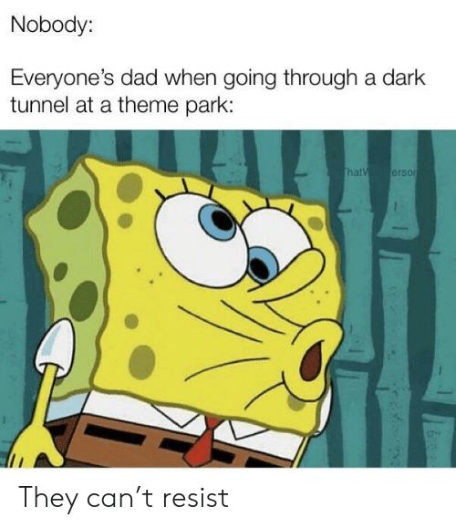 theme park: Nobody:  Everyone's dad when going through a dark  tunnel at a theme park:  thatV erson They can't resist