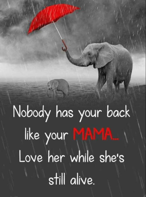 Alive, Love, and Memes: Nobody has your back  like your MAMA...  Love her while she's  still alive.