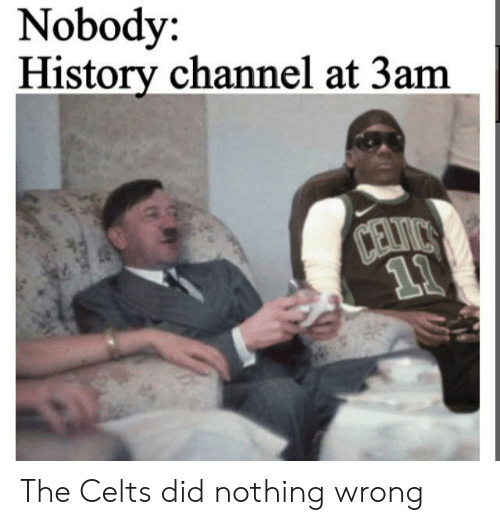 History, Celts, and History Channel: Nobody:  History channel at 3am  Davirs  11 The Celts did nothing wrong