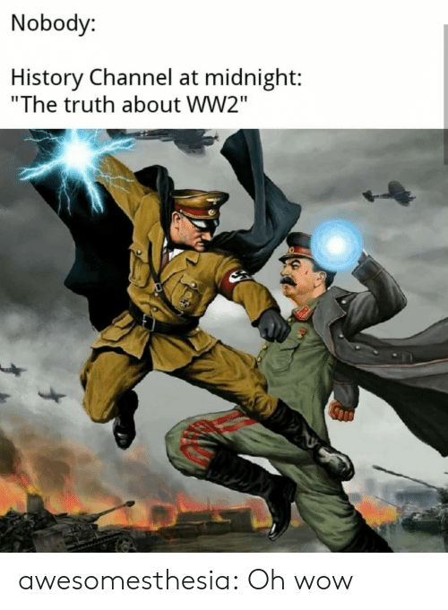 """history channel: Nobody:  History Channel at midnight:  """"The truth about WW2"""" awesomesthesia:  Oh wow"""