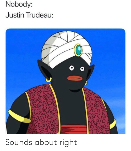 Justin Trudeau, Right, and Nobody: Nobody:  Justin Trudeau: Sounds about right