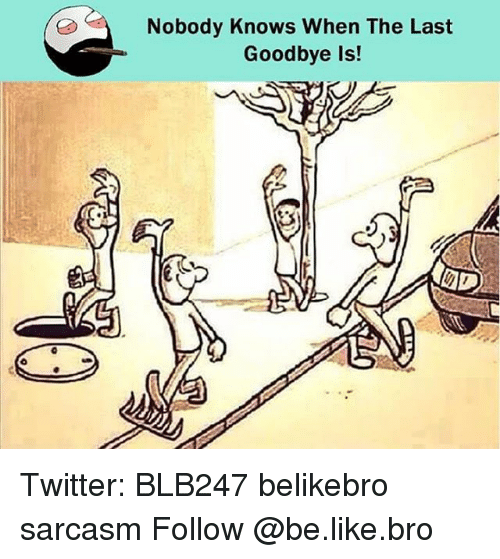 Nobody Know: Nobody Knows When The Last  Goodbye is! Twitter: BLB247 belikebro sarcasm Follow @be.like.bro