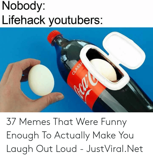 laugh out loud: Nobody:  Lifehack youtubers:  CLASSI 37 Memes That Were Funny Enough To Actually Make You Laugh Out Loud - JustViral.Net