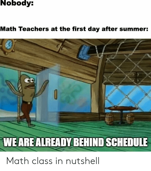 Summer, Math, and Schedule: Nobody:  Math Teachers at the first day after summer:  CD  WE ARE ALREADY BEHIND SCHEDULE Math class in nutshell