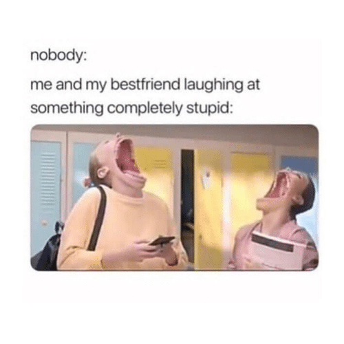 bestfriend: nobody:  me and my bestfriend laughing at  something completely stupid: