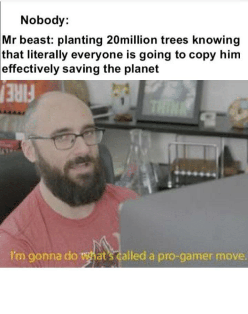 gonna do: Nobody:  Mr beast: planting 20million trees knowing  that literally everyone is going to copy him  effectively saving the planet  THIN  FIRE  I'm gonna do what's called a pro-gamer move. Such pro gamers