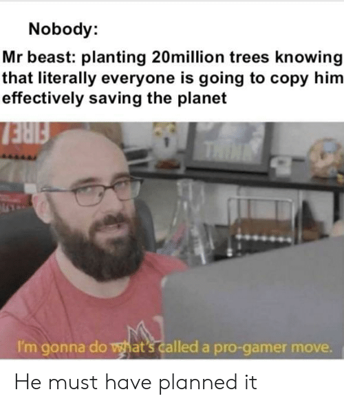 gonna do: Nobody:  Mr beast: planting 20million trees knowing  that literally everyone is going to copy him  effectively saving the planet  FIRE  THIN  I'm gonna do what's called a pro-gamer move. He must have planned it