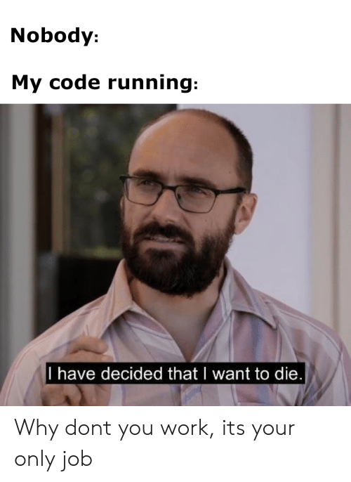 Why Don: Nobody:  My code running:  l have decided thatI want to die Why dont you work, its your only job