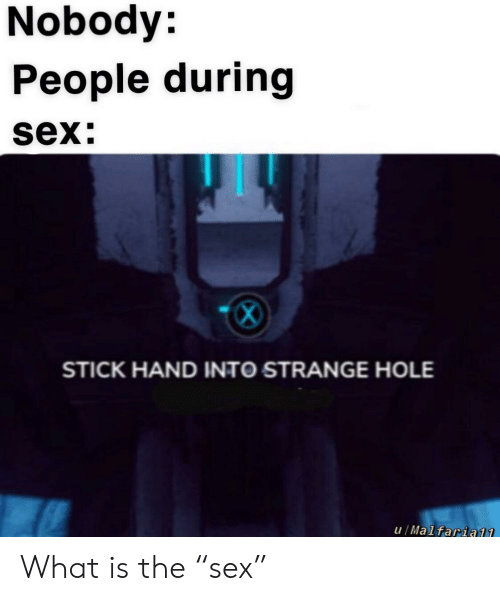 """Reddit, Sex, and What Is: Nobody:  People during  sex:  STICK HAND INTO STRANGE HOLE  u/Malfaria11 What is the """"sex"""""""