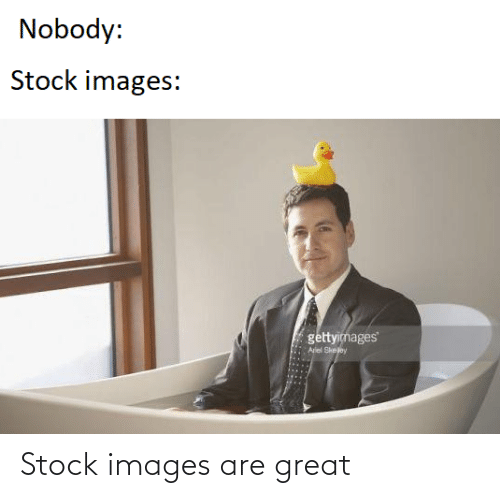 Images, Stock Images, and Great: Nobody:  Stock images:  gettyimages  Aiel Sheloy Stock images are great