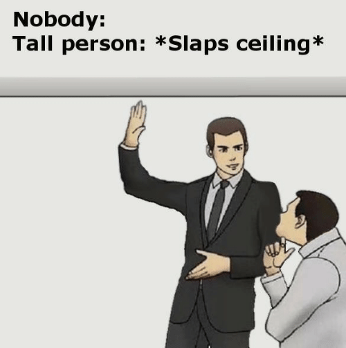 Ceiling: Nobody:  Tall person: *Slaps ceiling*