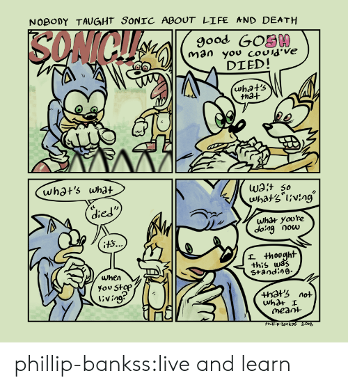 Hots: NOBODY TAUGHT SONIC ABOUT LIFE AND DEATH  9ood GOS00  DIED!  tha+  whot's what  Wat so  died  what yoore  dong Oocu  +h:s wa?  Standin9-  when  you Stap  l'ving  +hots not  meant  Phill ip-banksS 201s phillip-bankss:live and learn