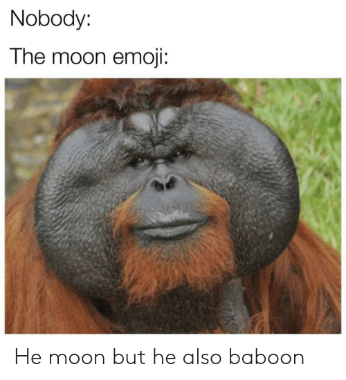 Tne: Nobody:  Tne moon emoji: He moon but he also baboon