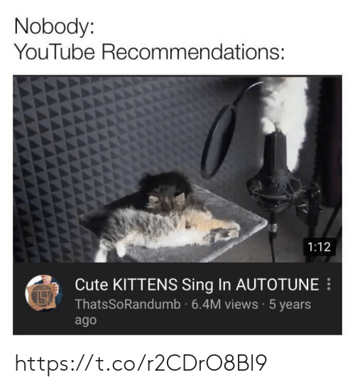 Cute, Memes, and youtube.com: Nobody:  YouTube Recommendations:  1:12  Cute KITTENS Sing In AUTOTUNE  ThatsSoRandumb 6.4M views 5 years  ago https://t.co/r2CDrO8Bl9