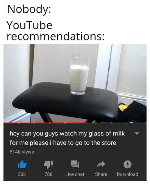Memes, youtube.com, and Chat: Nobody:  YouTube  recommendations:  hey can you guys watch my glass of milk  for me please i have to go to the store  514K views  30K  788 Live chat Share Download