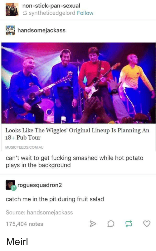 fruit salad: non-stick-pan-sexual  syntheticedgelord Follow  handsomejackass  Looks Like The Wiggles' Original Lineup Is Planning An  18+ Pub Tour  MUSICFEEDS.COM.AU  can't wait to get fucking smashed while hot potato  plays in the background  roguesquadron2  catch me in the pit during fruit salad  Source: handsomejackass  175,404 notes Meirl