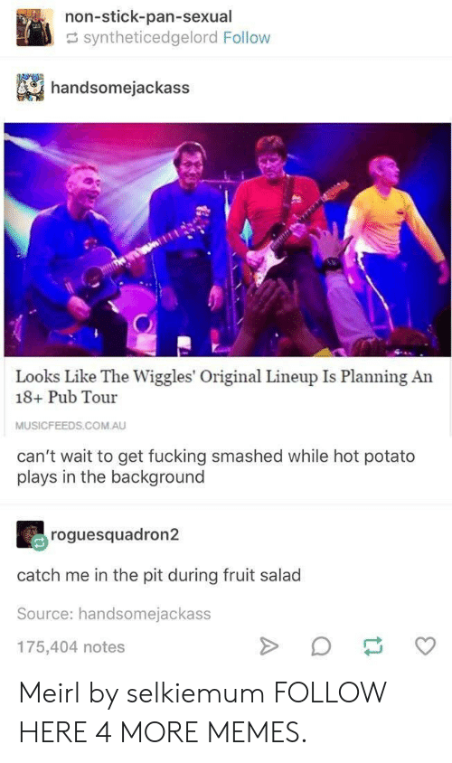 fruit salad: non-stick-pan-sexual  syntheticedgelord Follow  handsomejackass  Looks Like The Wiggles' Original Lineup Is Planning An  18+ Pub Tour  MUSICFEEDS.COM.AU  can't wait to get fucking smashed while hot potato  plays in the background  roguesquadron2  catch me in the pit during fruit salad  Source: handsomejackass  175,404 notes Meirl by selkiemum FOLLOW HERE 4 MORE MEMES.