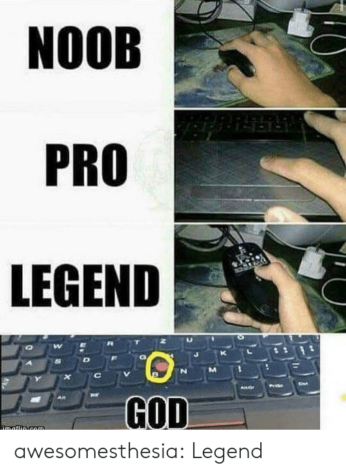 corn: NOOB  PRO  LEGEND  X  AHar  GOD  imaflin.corn awesomesthesia:  Legend