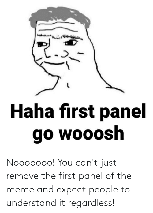 regardless: Nooooooo! You can't just remove the first panel of the meme and expect people to understand it regardless!