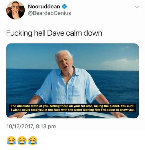 Your Fat: Nooruddean  @BeardedGenius  Fucking hell Dave calm down  The absolute state of you. Sitting there on your fat arse, killing the planet. You cunt.  I wish I could stab you in the face with the weird looking fish I'm about to show you.  10/12/2017, 8:13 pm 😂😂😂