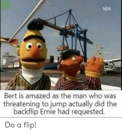 Nor: NOR  Bert is amazed as the man who was  threatening to jump actually did the  backflip Ernie had requested. Do a flip!