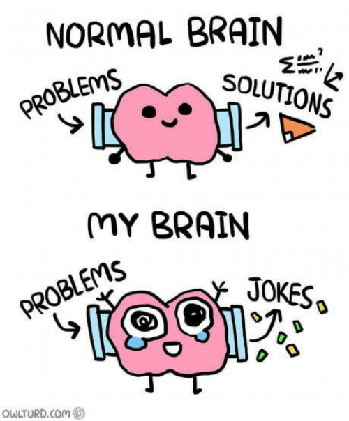 Owlturd: NORMAL BRAIN  SOLUTIONS  PROBLEMS  MY BRAIN  JOKES  PROBLEMS  OWLTURD.COm