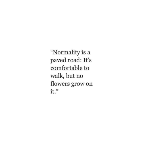 "Comfortable, Flowers, and Grow: ""Normality is a  paved road: It's  comfortable to  walk, but no  flowers grow on  1t"