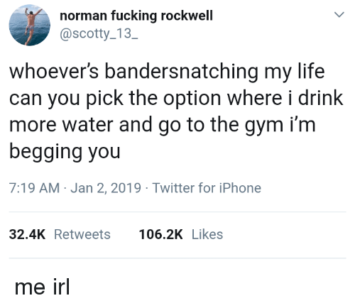 Norman: norman fucking rockwell  @scotty 13  SC  whoever's bandersnatching my life  can you pick the option where i drink  more water and go to the gym i'm  begging you  7:19 AM-Jan 2, 2019 Twitter for iPhone  32.4KRetweets 106.2K Likes me irl