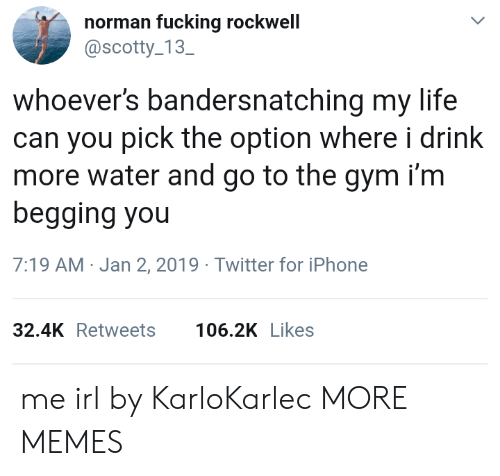 Norman: norman fucking rockwell  @scotty 13  SC  whoever's bandersnatching my life  can you pick the option where i drink  more water and go to the gym i'm  begging you  7:19 AM-Jan 2, 2019 Twitter for iPhone  32.4KRetweets 106.2K Likes me irl by KarloKarlec MORE MEMES