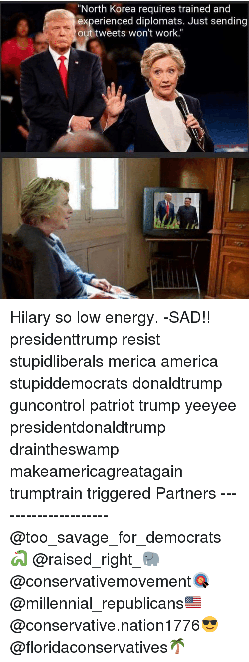 """America, Energy, and Memes: """"North Korea requires trained and  experienced diplomats. Just sending  out tweets won't work."""" Hilary so low energy. -SAD!! presidenttrump resist stupidliberals merica america stupiddemocrats donaldtrump guncontrol patriot trump yeeyee presidentdonaldtrump draintheswamp makeamericagreatagain trumptrain triggered Partners --------------------- @too_savage_for_democrats🐍 @raised_right_🐘 @conservativemovement🎯 @millennial_republicans🇺🇸 @conservative.nation1776😎 @floridaconservatives🌴"""