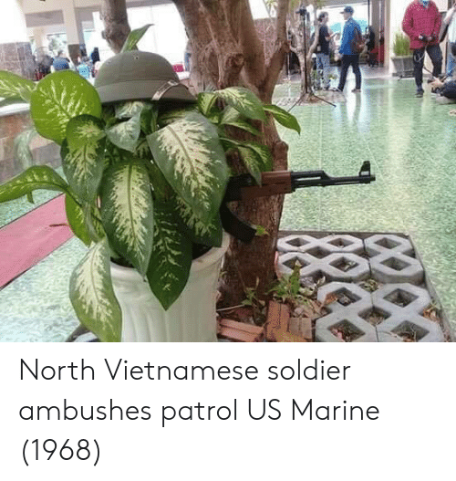 Vietnamese: North Vietnamese soldier ambushes patrol US Marine (1968)
