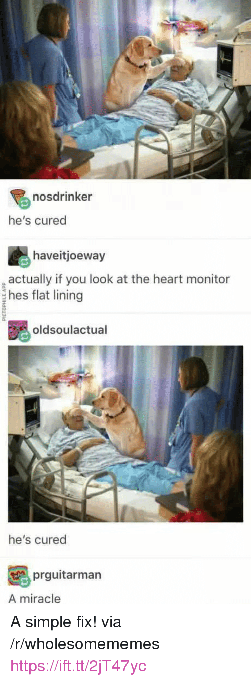 "Heart, Simple, and Via: nosdrinker  he's cured  haveitjoeway  actually if you look at the heart monitor  hes flat lining  oldsoulactual  he's cured  prguitarman  A miracle <p>A simple fix! via /r/wholesomememes <a href=""https://ift.tt/2jT47yc"">https://ift.tt/2jT47yc</a></p>"