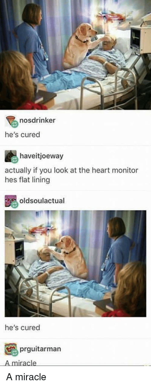 Heart, You, and The Heart: nosdrinker  he's cured  haveitjoeway  actually if you look at the heart monitor  hes flat lining  oldsoulactual  he's cured  prguitarman  A miracle <p>A miracle</p>