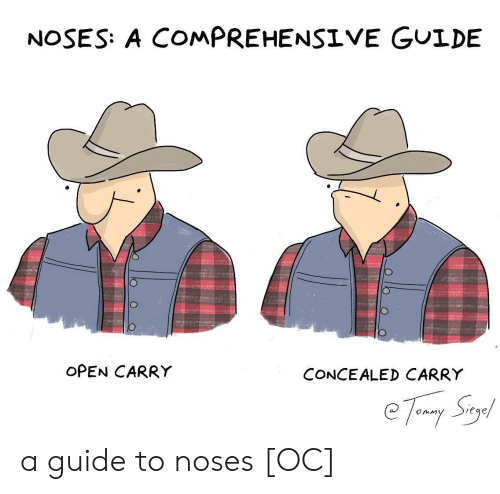 Open, Guide, and Concealed Carry: NOSES: A COMPREHENSIVE GUIDE  OPEN CARRY  CONCEALED CARRY  eqe a guide to noses [OC]