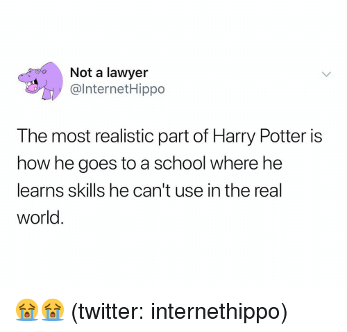 Harry Potter, Lawyer, and School: Not a lawyer  @lnternetHippo  The most realistic part of Harry Potter is  how he goes to a school where he  learns skils he can't use in the real  world 😭😭 (twitter: internethippo)