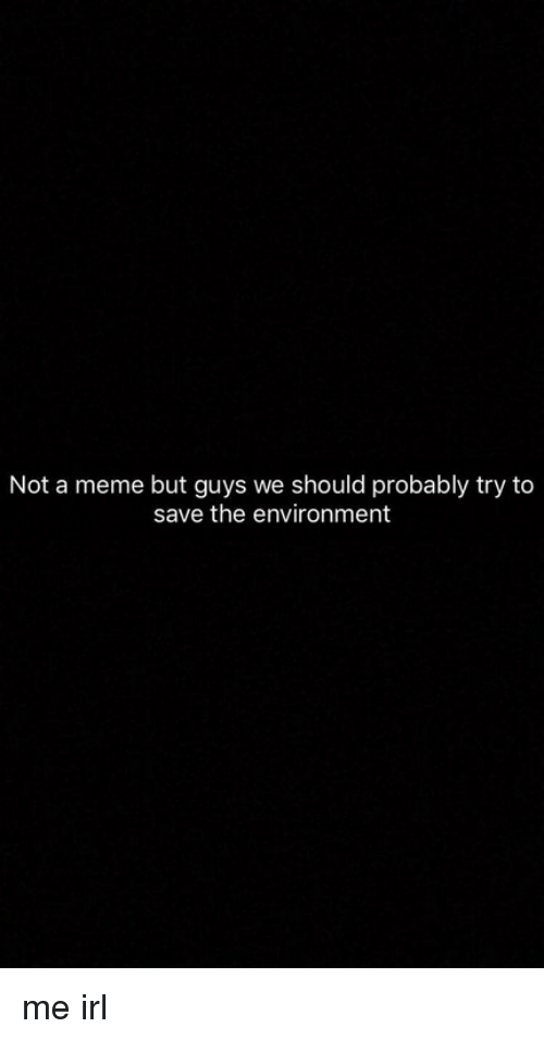 Meme, Irl, and Me IRL: Not a meme but guys we should probably try to  save the environment