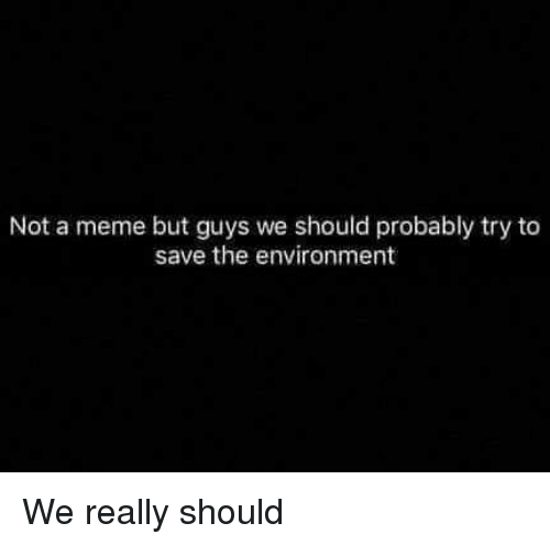 Meme, Environment, and Really: Not a meme but guys we should probably try to  save the environment We really should