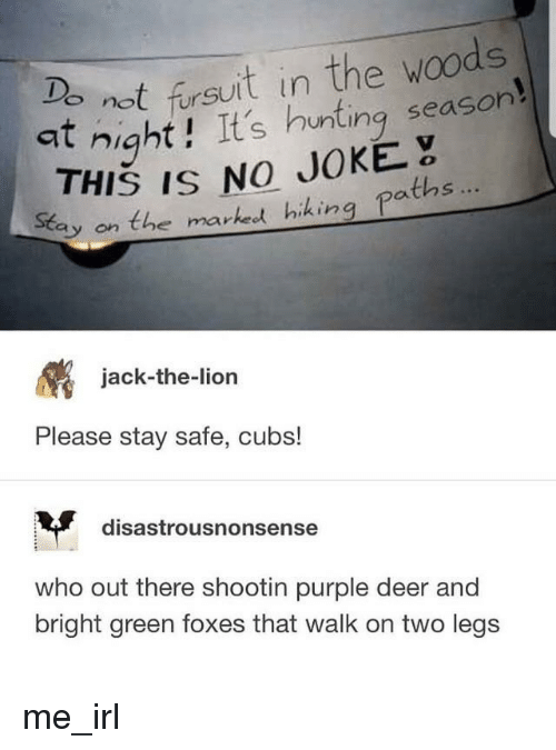 in the woods: not firsuit in the woods  at night! It's hunting season  THIS IS NO JOKE  Eay on the marked hihing paths  jack-the-lion  Please stay safe, cubs!  disastrousnonsense  who out there shootin purple deer and  bright green foxes that walk on two legs me_irl