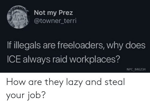 Terri: Not my Prez  @towner_terri  If illegals are freeloaders, why does  ICE always raid workplaces?  NPC 846234 How are they lazy and steal your job?
