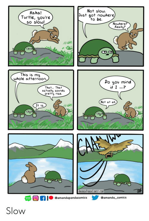 toon: Not slow.  Just got nowhere)  to be  Haha!  Turtle, you're  so slow!  Nowhere?  Really?  This is my  whole afternoon.  Do you mind  if I -?  That... That  actually sounds  pretty nice.  Not at all  It is  CAFE  AMANDAPANDACOMICS.COM  @amanda_comics  @amandapandacomics  WEB  TOON Slow