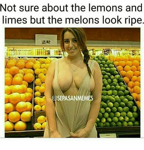 melons: Not sure about the lemons and  limes but the melons look ripe  OSEPASANMEMES