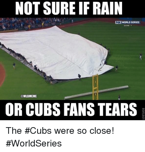 Cubs Fans: NOT SURE IF RAIN  WORLDSERIES  GAME 7  @MLBMEME  OR CUBS FANS TEARS The #Cubs were so close! #WorldSeries