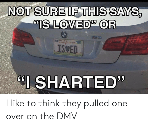 """DMV: NOT SURE IF THIS SAYS,  """"IS LOVED OR  APR California  ISWED  I SHARTED"""" I like to think they pulled one over on the DMV"""