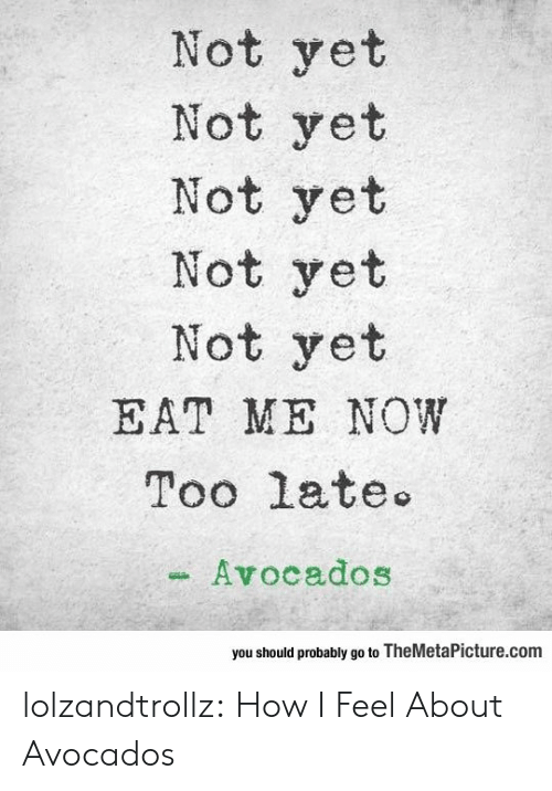 not yet: Not yet  Not yet  Not yet  Not yet  Not yet  EAT ME NOW  Too late  Avocados  you should probably go to TheMetaPicture.com lolzandtrollz:  How I Feel About Avocados