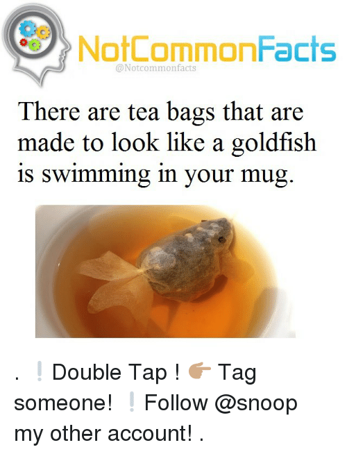 tea bagging: NotCommonFacts  @Not common facts  There are tea bags that are  made to look like a goldfish  is Swimming in your mug . ❕Double Tap ! 👉🏽 Tag someone! ❕Follow @snoop my other account! .
