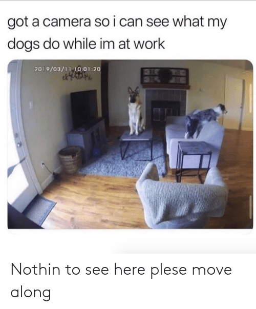 move: Nothin to see here plese move along