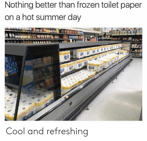 Frozen, Summer, and Cool: Nothing better than frozen toilet paper  on a hot summer day Cool and refreshing